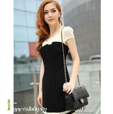 Đầm Cami Phối Màu